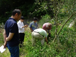 オリーブ農家のオリーブ農家によるオリーブ農家のためのワークグループ 『オリーブ栽培/ビジネス研究会』