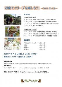 湘南でオリーブを楽しもう ~2018年6月~
