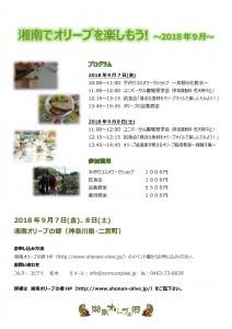 湘南でオリーブを楽しもう!2018年9月